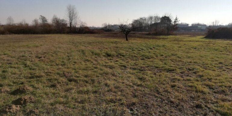 terreno-amendola3